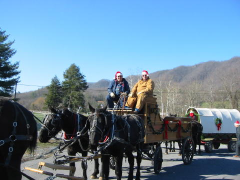 Christmas Horse and Buggy Style